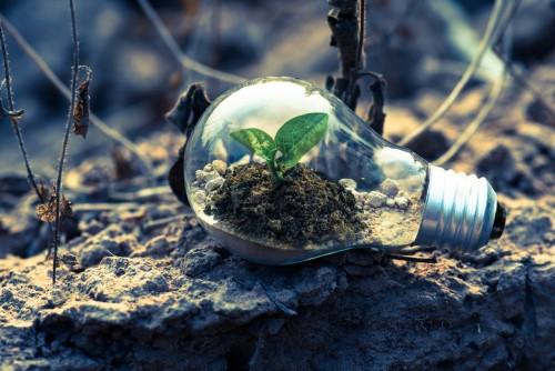Starace (Enel): Elettrificando i consumi energetici del mondo si può de-carbonizzare l'intera economia