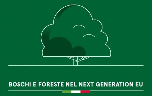 Next Generation Eu. Perché fare squadra per gestire in modo sostenibile boschi e foreste
